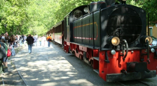The train of Pelion